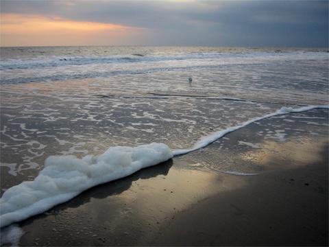 BESSER LEBEN Gratisreise Nordsee